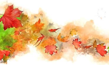 Herbstzeit ist Vatazeit